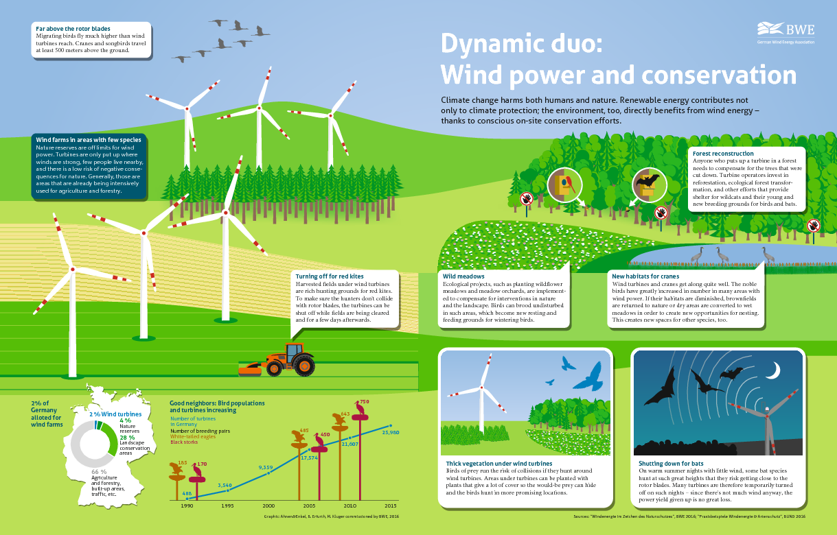 Dynamic duo: Wind power and conservation